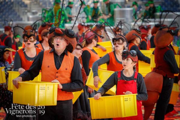 Filage costumes - Choristes-percussionnistes, Fourmis, Répétitions, Vendanges, Photographies de la Fête des Vignerons 2019.