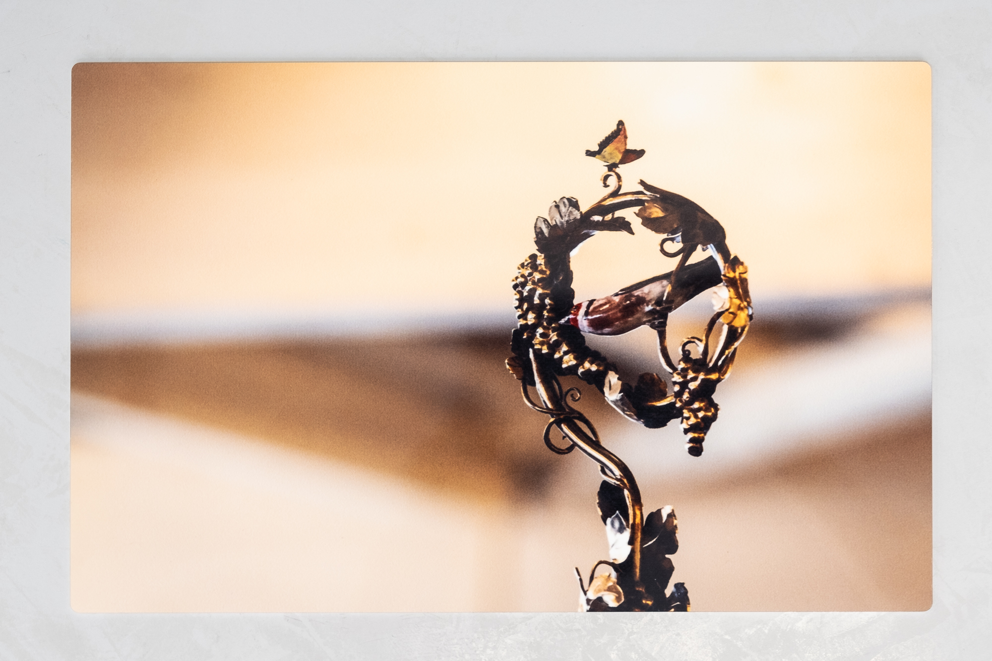 Impression sur alu, photographies officielles de la Fête des Vignerons 2019