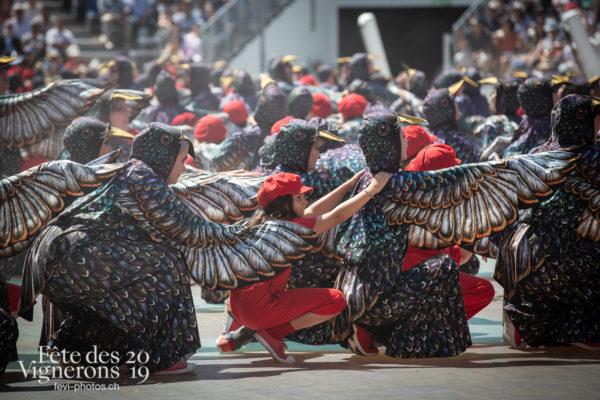 08_11_dernier_spectacle_©JulieMasson-0283 - Enfants protecteurs, Etourneaux, Final, Spectacle, Photographies de la Fête des Vignerons 2019.