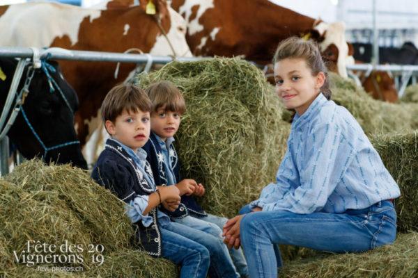 Ce vendredi 12 juillet, les vaches du spectacle sont arrivée à la ferme, au Jardin Doret.
