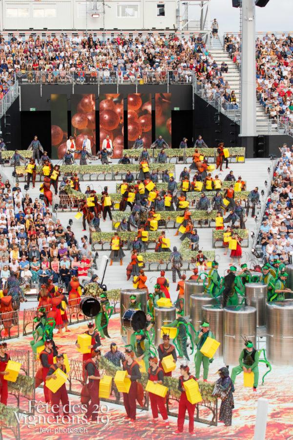 Spectacle - Choristes-percussionnistes, Fourmis, Percussionnistes, Sauterelles, Spectacle, Vendanges, Photographies de la Fête des Vignerons 2019.
