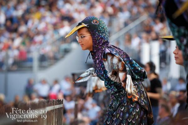 Spectacle - Etourneaux, Spectacle, Vendanges, Photographies de la Fête des Vignerons 2019.