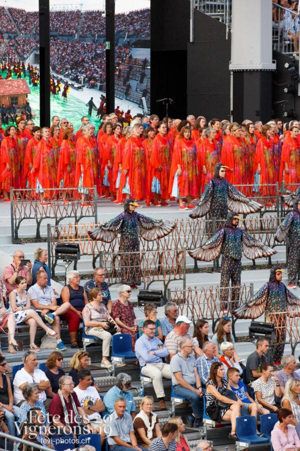 Spectacle - Chœurs de la Fête, Etourneaux, Musiciens de la Fête, Spectacle, Vendanges, Photographies de la Fête des Vignerons 2019.