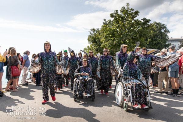 Cortège de la confrérie du 31 juillet 2019, Vevey, fête des vignerons - Cortège, Cortèges Confrérie, Etourneaux, Photographies de la Fête des Vignerons 2019.