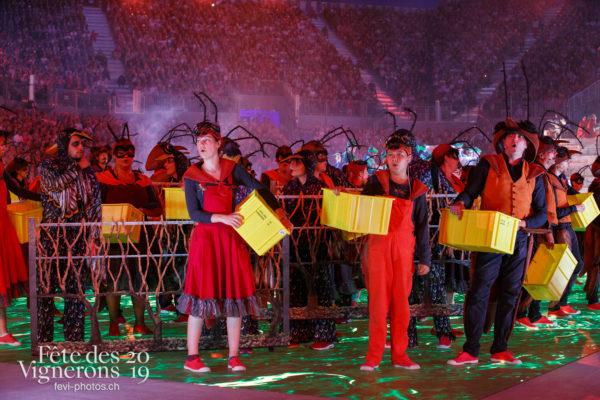 Spectacle - Choristes-percussionnistes, Etourneaux, Fourmis, Spectacle, Vendanges, Photographies de la Fête des Vignerons 2019.