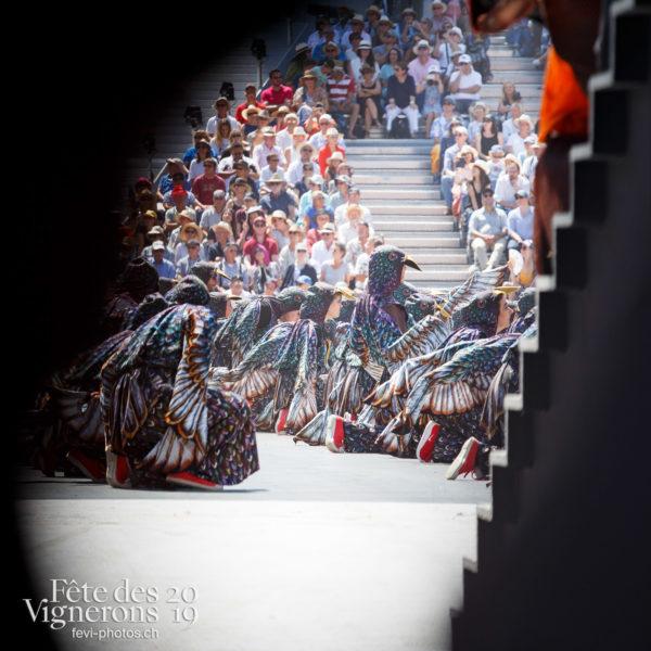 Spectacle de jour, dernière représentation - Etourneaux, Protection de la vigne, Spectacle, Spectacle jour, Photographies de la Fête des Vignerons 2019.