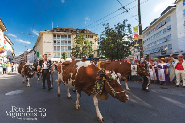 Cortège de la Confrérie - Armaillis, Cortège, Cortèges Confrérie, Ville en Fête, Photographies de la Fête des Vignerons 2019.