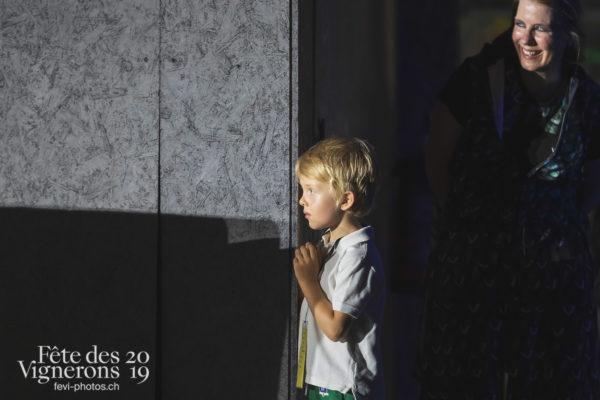 spectacle de nuit - Etourneaux, Photographies de la Fête des Vignerons 2019.